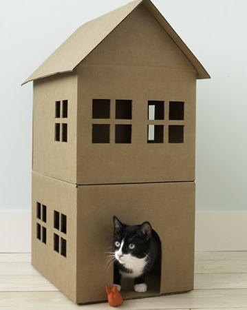 Cara Membuat Rumah Kucing Dari Kardus Bekas Parselday